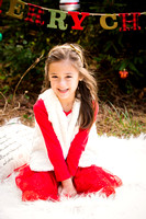 Fitzgerald Holiday Mini Session 2016 Downloads