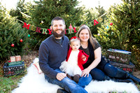 Henry Holiday Mini Session 2016 Downloads
