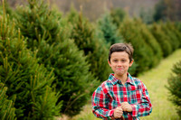 Frey Family Holiday Mini Session 2017 Downloads