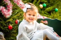Fitzgerald  Holiday Mini Session 2017 Downloads