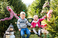 Gleason Holiday Mini Session 2017 for Printing