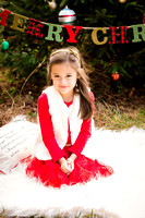 Fitzgerald Family Holiday Mini Session 2016 Proofing