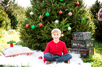 Fitch_Xmas_2015 (7 of 129)